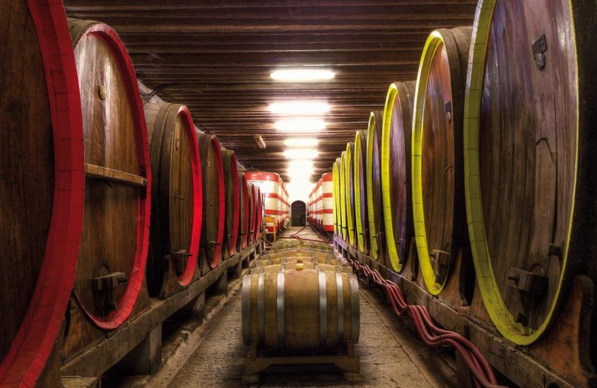 Il vino, una storia millenaria