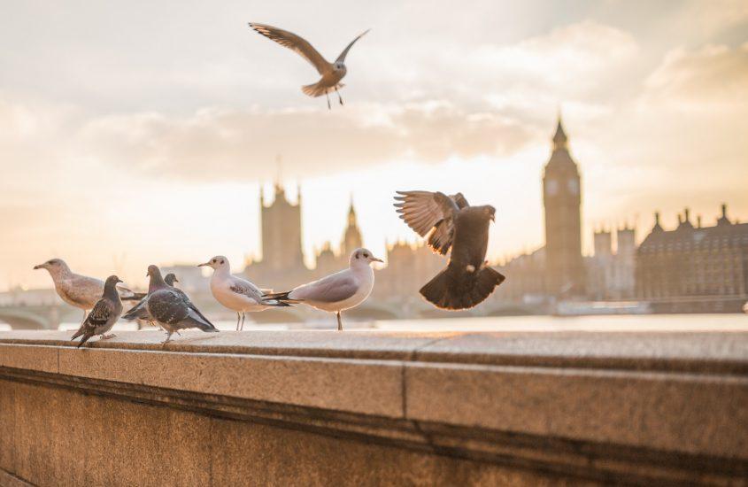 Una passeggiata per Londra
