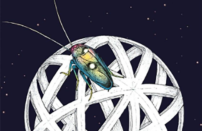 Dall'autore di Espiazione: Lo scarafaggio