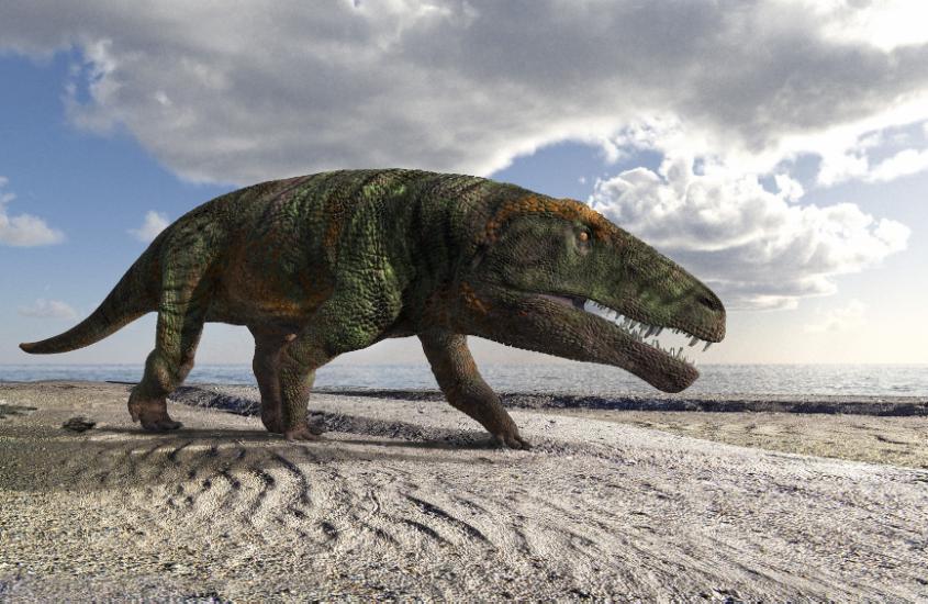 Orme fossili di grandi rettili sulle Alpi Occidentali