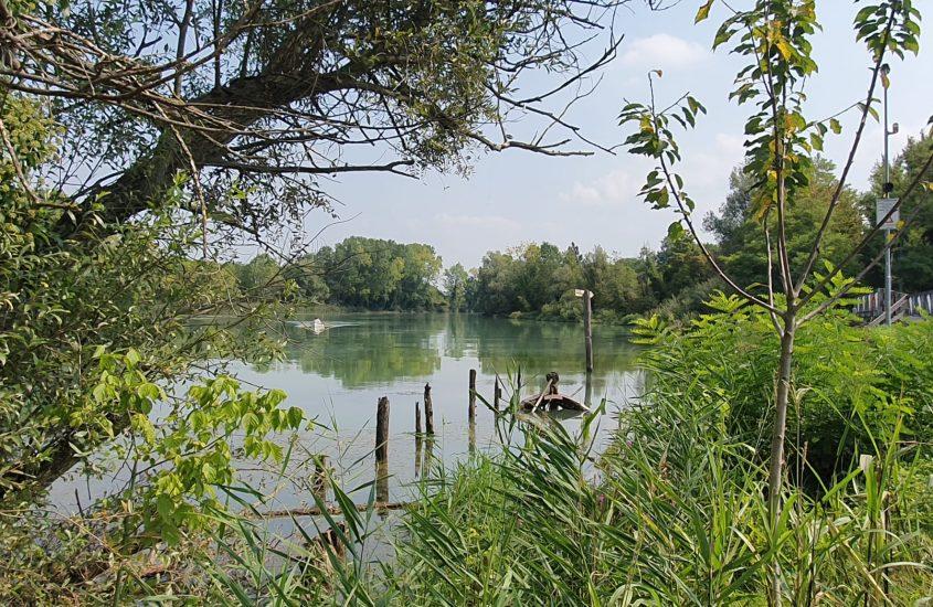 In mezzo scorre il fiume: il Sile