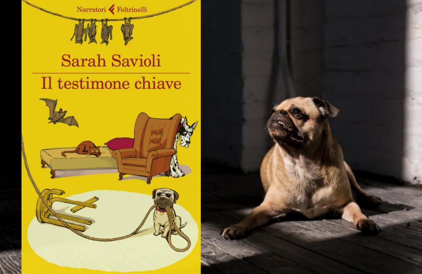 """Il testimone chiave"" di Sarah Savioli"