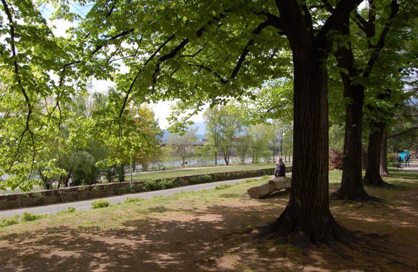Un nuovo Parco Bioenergetico nel cuore di Bolzano